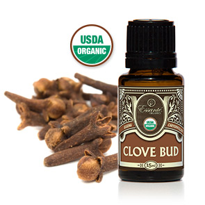 Essential Oil: Clove Bud 15ml