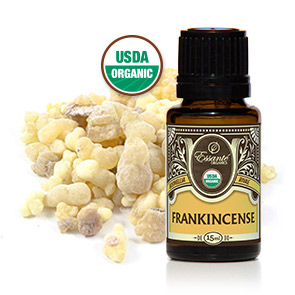 Essential Oil: Frankincense Boswellia 15ml