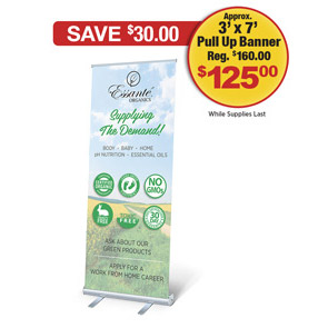 Supplying The Demand Sky Field Retractible Pull Up Banner<br>With Carrying Case (Approx. 3' x 7')